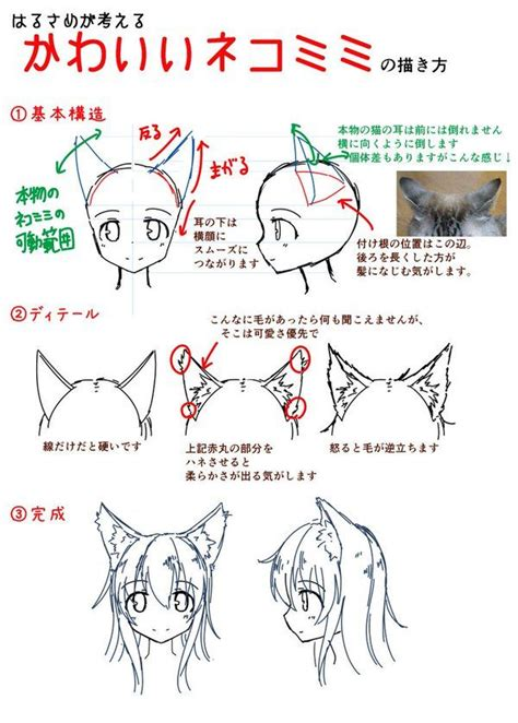 pin  kuroharu  draw stuff drawings   draw ears