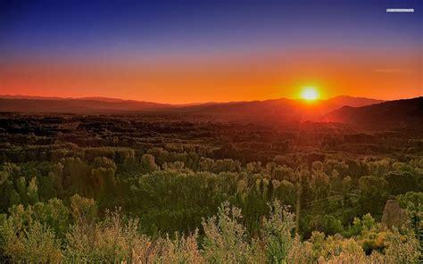 puesta del sol roja  gran bosque fondos de pantalla