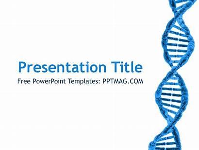 Dna Powerpoint Template Templates Tender Ppt Bioinformatics