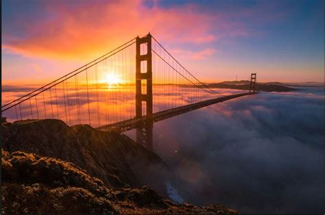 golden gate image for android   HD Wallpaper