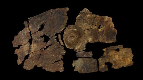 2300 year bark shield showcases a previously unknown
