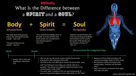 what is the difference between a and a sofa what is the difference between soul and spirit