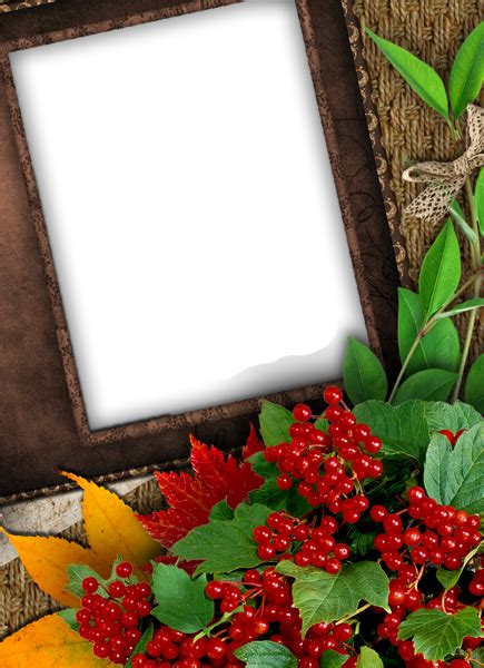 nice fall png photo frame gallery yopriceville high