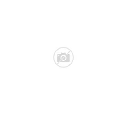 Kitchen Modern Counter Vector Island Illustration Illustrations