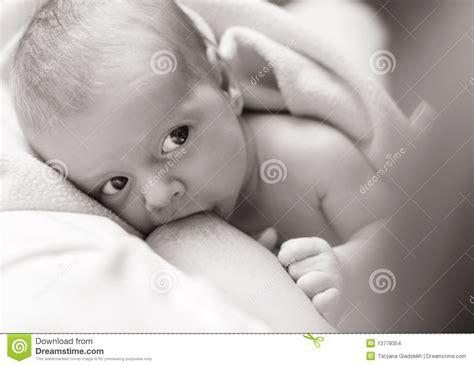 Breastfeeding Stock Photo Image Of Drink Milk Nipple