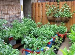 balkon bepflanzen praktische tipps und wichtige hinweise With katzennetz balkon mit vertical garden kaufen