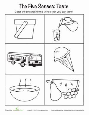 things you can taste worksheet education 119 | taste the 5 senses preschool