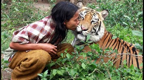 Tiger And Man Best Friends Youtube