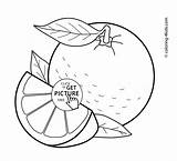 Coloring Orange Fruits Printable Basket Fruit Vegetable Papaya Tree 4kids Sheets Getcolorings Worksheets Printables раскраски Visit Enregistrée Depuis источник sketch template
