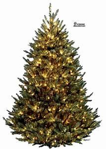 Christmas Tree Why Christmas Lights Decoration