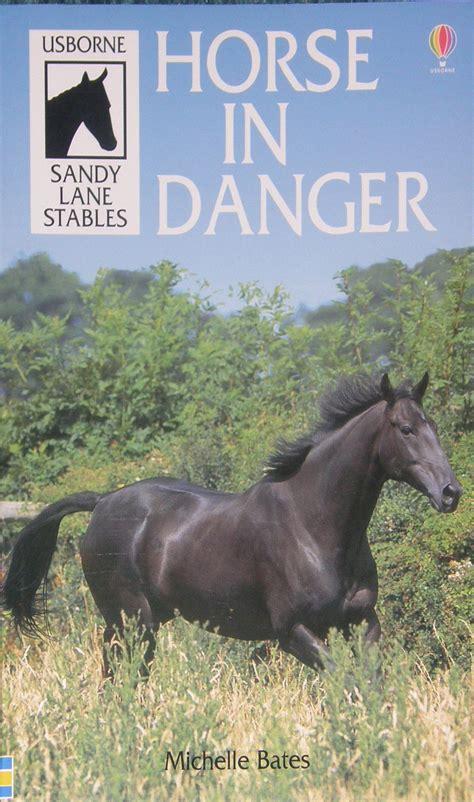 lane sandy stables usborne danger books horse publisher publishing