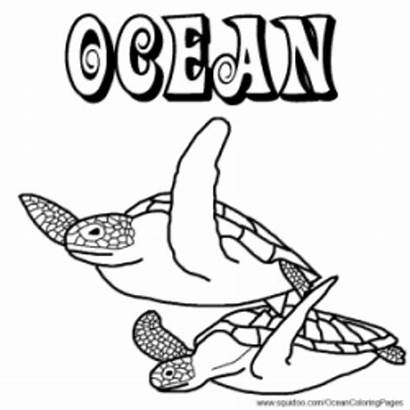 Coloring Pages Ocean Animal Facts Animals Hubpages