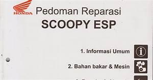 Scoopy Esp