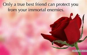 Red Roses And Friendship Quotes. QuotesGram