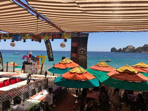 mango deck restaurant beach club cabo san lucas mexico