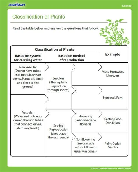 classification of plants education biology classroom teaching science plant science