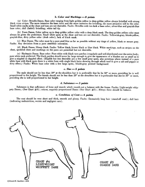 The Great Dane Standard Through the Ages Part II ~1945~