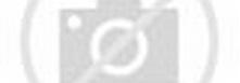 Notice to Investors in NASDAQ:IAC shares: Lawsuit filed ...