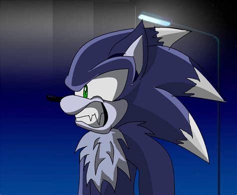 Werehog In Sonic X By Sonic-chain On Deviantart