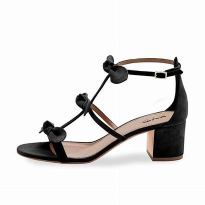 Sandals Shoes Block Strap Heel Prom Xyd