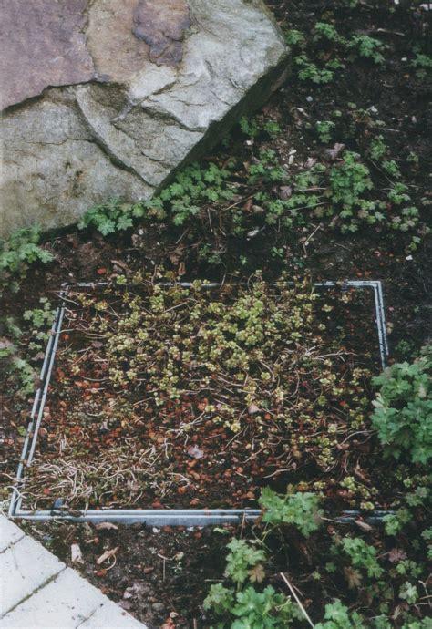 Garten Landschaftsbau Stadt Essen by Volbers Redemann Garten Und Landschaftsbau