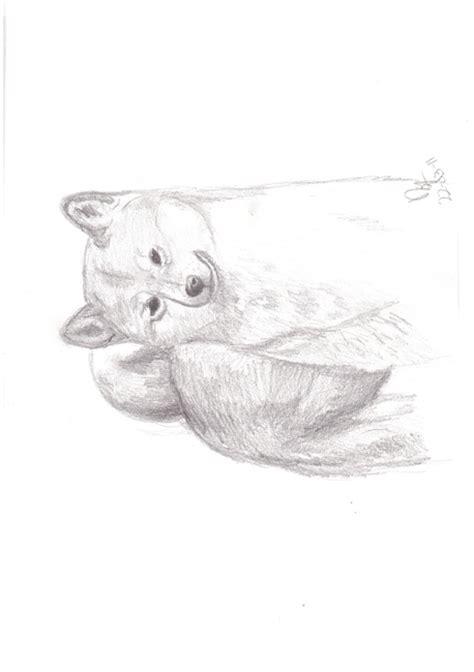fotoalbum schilder en tekenwerk