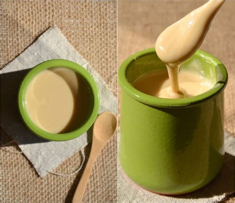 comment cuisiner le soja les purées d oléagineux 1 2 3 veggie
