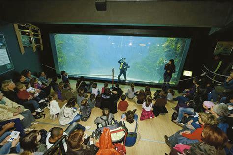 prix aquarium de lyon aquarium de lyon ce qu il faut savoir tripadvisor