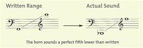 range of horn horn