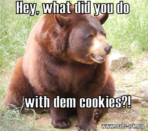 Bear Memes - pin by noahs ark on memes pinterest