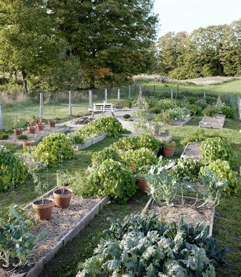 country living gardens neko case s vermont home gardens beautiful and raised beds