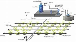 Drip Irrigation Information Guide