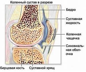 Народные рецепты лечения коленных суставов артроз
