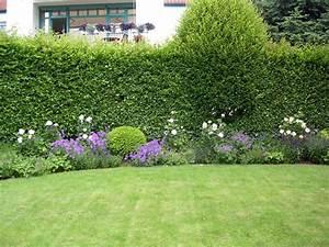 Sichtschutz Terrasse Pflanzen : garten pflanzen sichtschutz die besten sichtschutz ~ Michelbontemps.com Haus und Dekorationen
