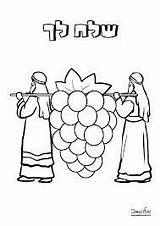 Coloring Jewish Bible Stencils sketch template