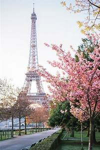 Romantic, Paris, Pictures, Photos, And, Images, For, Facebook