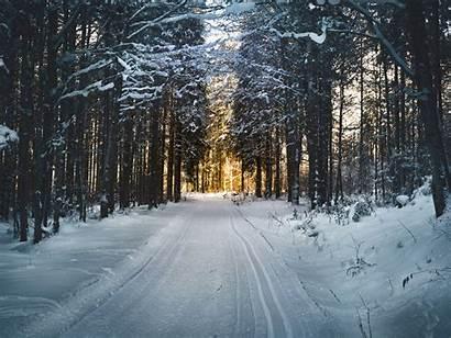 Winter Season Cities Featured