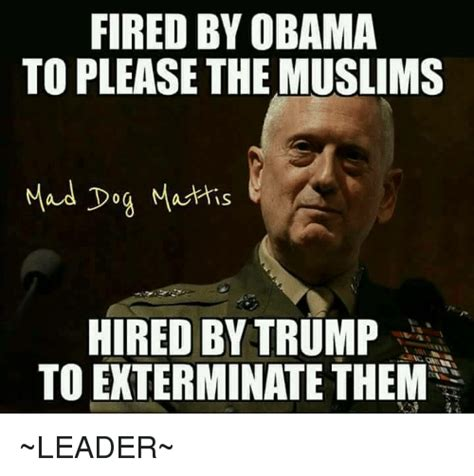Mad Meme Mad Dogs Memes Of 2017 On Sizzle Mattis