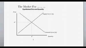 Supply And Demand  And Equilibrium Price  U0026 Quanitity