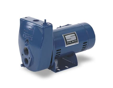 Sta-rite Convertible Jet Pump, Cast Iron