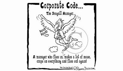 Seagull Manager Cartoon Corporate