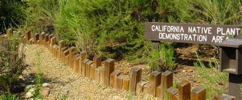 ca plants california native plant garden balboa park