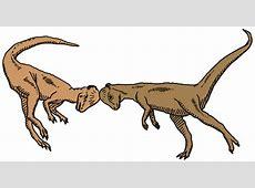 lungenodem dinosaurierinteresse pachycephalosauruskampf
