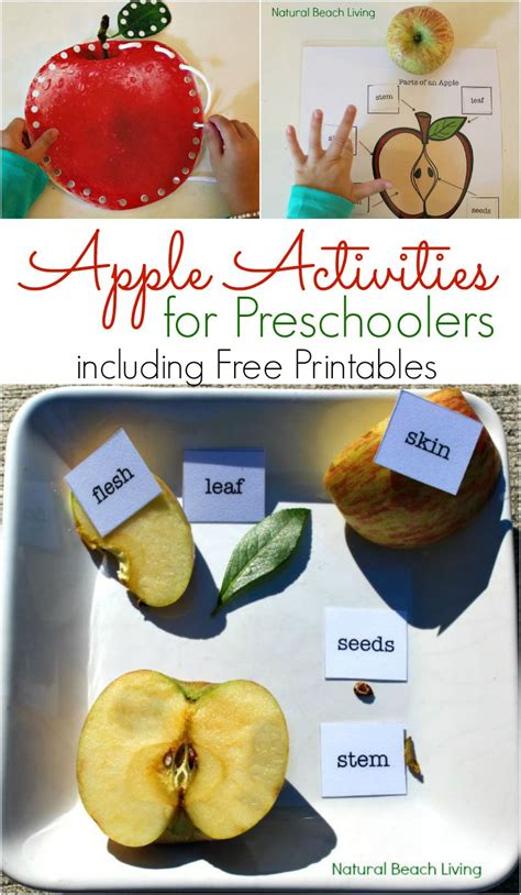 apple activities for preschoolers apple science free 315 | apple funpin