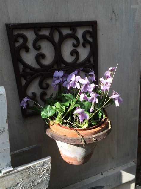 Pflanzen Im März by 025 Pflanzen