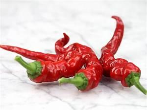 Maule39s Red Hot Pepper Baker Creek Heirloom Seeds