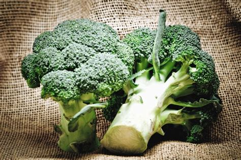 รูปภาพฟรี: คะน้า ผัก พืช อาหาร เกษตรอินทรีย์