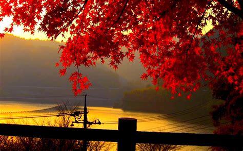 autumn landscape wallpapers wallpaper cave