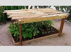 Wood Pallets Ideas Pergola for Plants Pallets Designs
