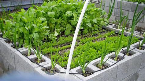 cinder block garden 12 amazing cinder block raised garden beds grid world